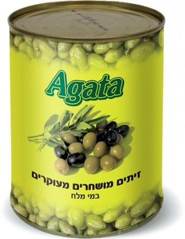 Греческие маслины